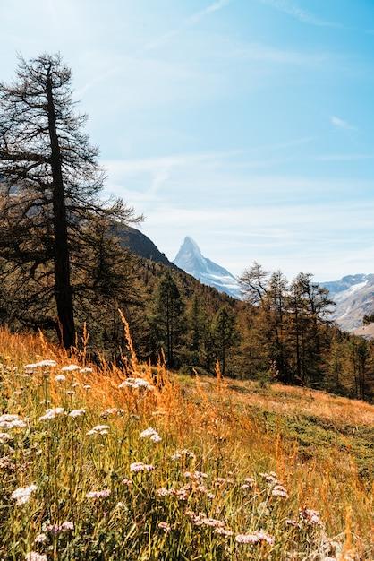 Piękny Górski Krajobraz Z Widokiem Na Szczyt Matterhorn W Zermatt W Szwajcarii. Premium Zdjęcia