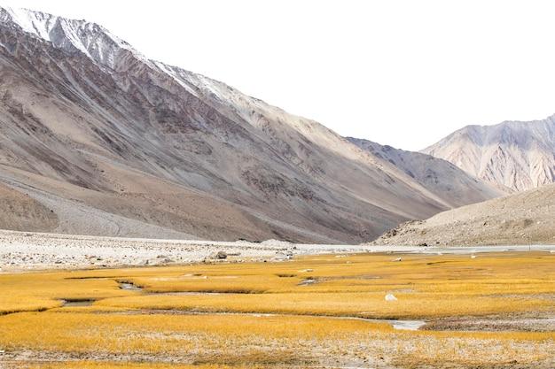 Piękny Krajobraz, Jesień Kolorowe I Himalaje W Leh Ladakh, Północnej Części Indii Premium Zdjęcia