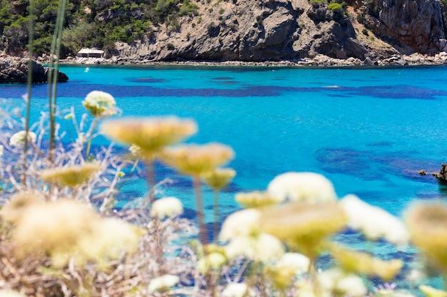 Piękny Krajobraz Na Ibizie Błękitnego Oceanu W Słonecznym Dniu. Koncepcja Lato I Wakacje. Premium Zdjęcia
