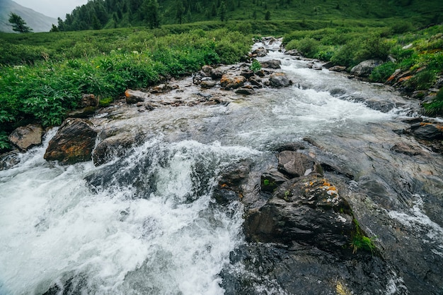 Piękny Krajobraz Z Dużymi Kamieniami W Karabin Wodny Górskiej Rzeki Premium Zdjęcia