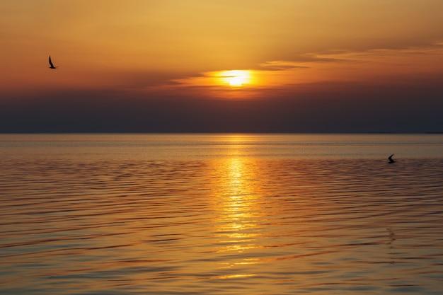 Piękny Letni Zachód Słońca Nad Jeziorem Premium Zdjęcia