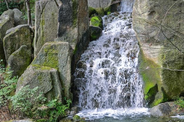 Piękny Naturalny Wodospad Darmowe Zdjęcia
