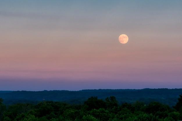 Piękny Strzał Dużego Szarego Księżyca Na Wieczornym Niebie Nad Gęstym Zielonym Lasem Darmowe Zdjęcia