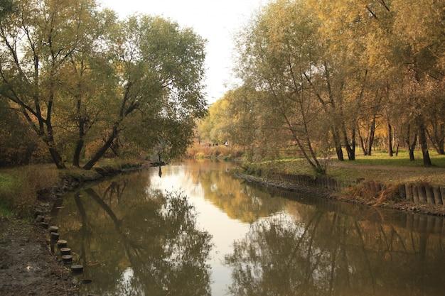 Piękny Strzał Rzeka W Parku W Moskwa Z Odbiciem Drzewa I Niebo Darmowe Zdjęcia