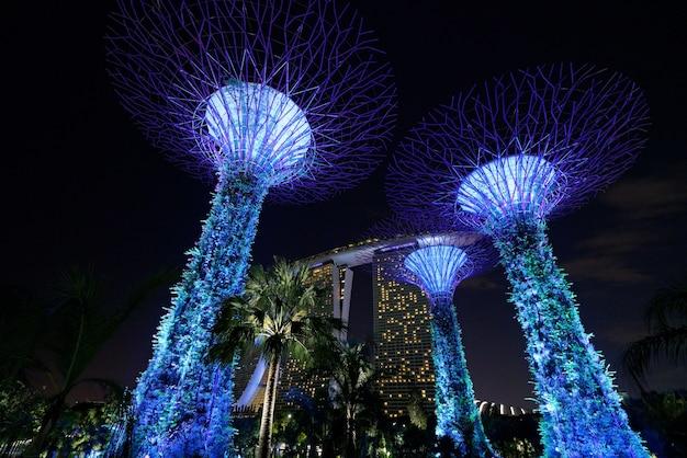 Piękny Strzał Wysokich Błękitnych Architektonicznych Budynków Singapurowi Ogrody Zatoką Darmowe Zdjęcia