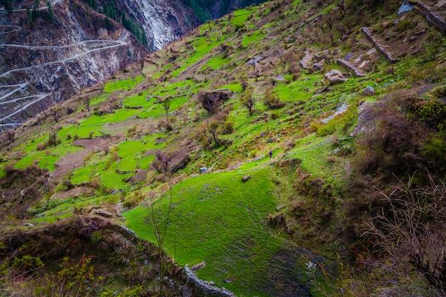 Piękny Strzał Wysokie Góry Pokryte Zieloną Trawą I Krzewami Darmowe Zdjęcia