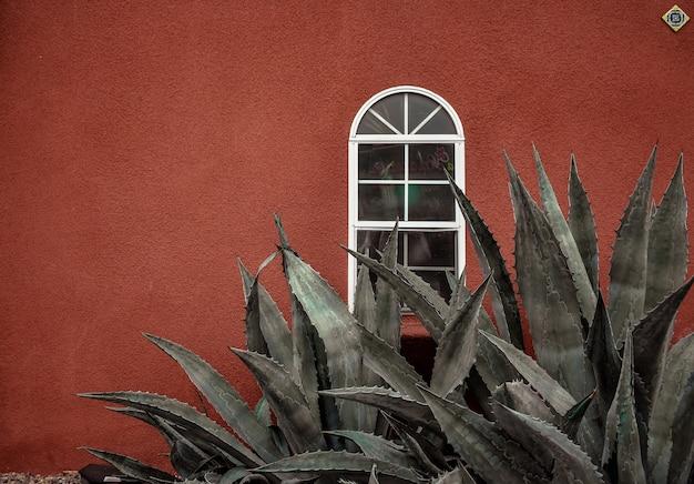 Piękny Szczegółowy Widok Pintoe Langit Dahromo Bantul W Indonezji Darmowe Zdjęcia