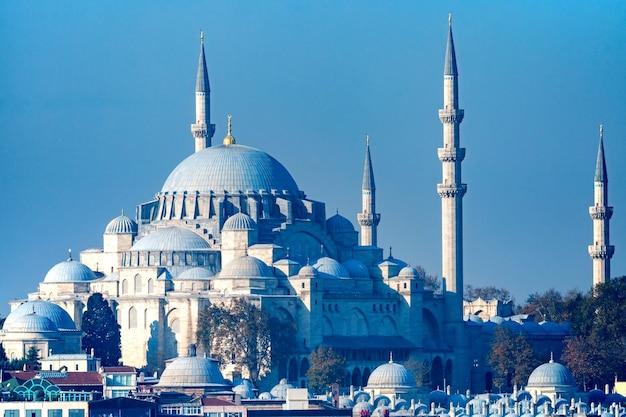 Piękny Widok Na Meczet Sulejmana Wspaniałego W Stambule, Turcja. Premium Zdjęcia