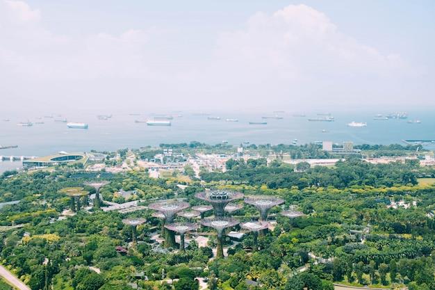 Piękny Widok Z Lotu Ptaka Strzał Ogród Zatoką W Singapur Darmowe Zdjęcia