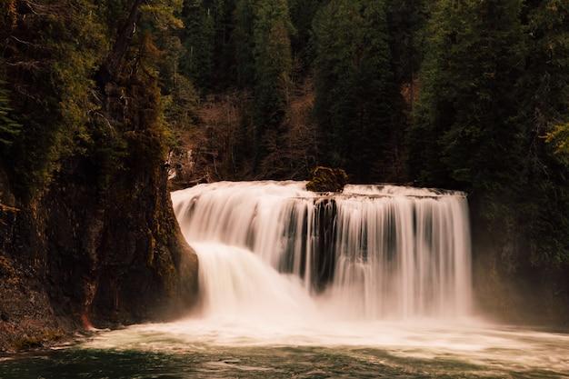 Piękny Wodospad W Lesie Darmowe Zdjęcia