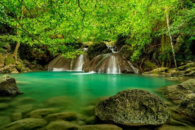 Piękny Wodospad W Zielonym Lesie Premium Zdjęcia