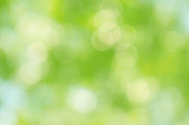 Piękny Zielony Bokeh Drzewo Opuszcza Naturę Z Ostrości Tła Premium Zdjęcia