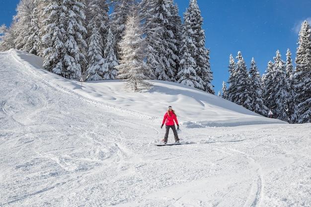 Piękny Zimowy Dzień Darmowe Zdjęcia