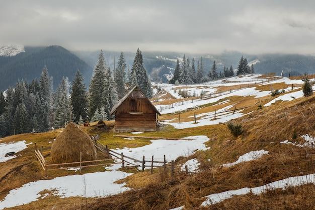 Piękny Zimowy Krajobraz W Górach. Carpatians. Ukraina Premium Zdjęcia