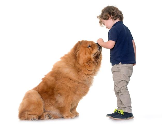 Pies Chow Chow I Mały Chłopiec Premium Zdjęcia