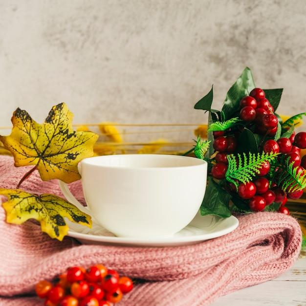 Pij Z Jesiennymi Liśćmi Na Szaliku Darmowe Zdjęcia