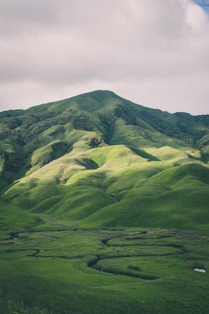 Pionowe Ujęcie Gór Pokrytych Zielenią - Idealne Dla Telefonów Komórkowych Darmowe Zdjęcia
