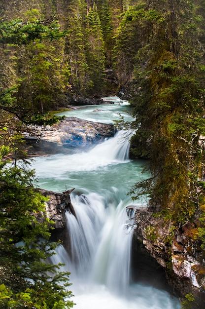 Pionowe Ujęcie Małej Rzeki W Masywnym Kanionie Johnston Darmowe Zdjęcia