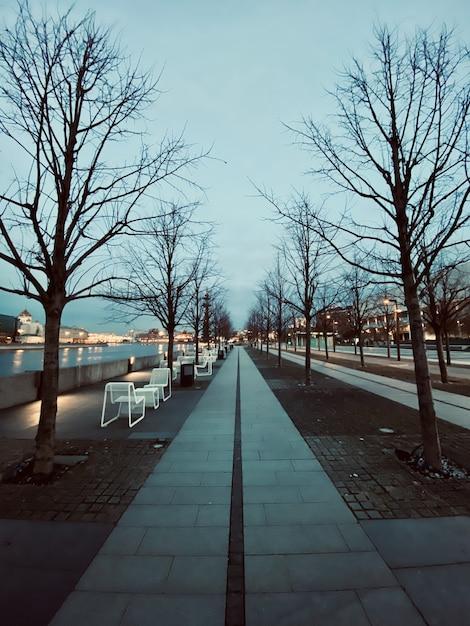 Pionowe Ujęcie Parku Na Brzegu Rzeki W Mieście W Godzinach Wieczornych Darmowe Zdjęcia