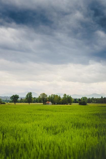 Pionowe Ujęcie Pięknego Zielonego Pola Ze Starą Stodołą Widoczną W Oddali Darmowe Zdjęcia