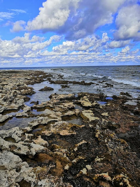 Pionowe Ujęcie Pięknej Kamienistej Plaży Na Malcie Zrobione W Jasny, Słoneczny Dzień Darmowe Zdjęcia