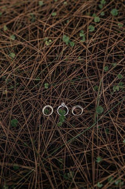 Pionowe Ujęcie Trzech Pierścieni Ułożonych Na Powierzchni Małych Wąskich Drewnianych Gałęzi Darmowe Zdjęcia