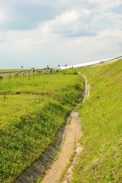 Pionowe Wysoki Kąt Strzału Z Zielonym Trawiastym Polu Autostradą Darmowe Zdjęcia