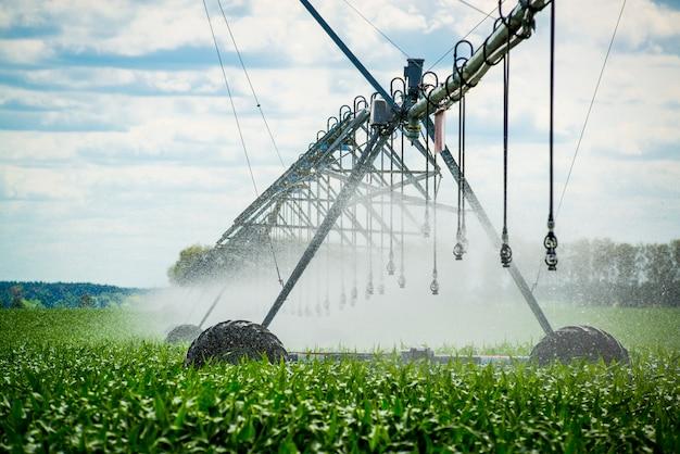 Pivot nawadniania podlewanie pola, piękny widok Premium Zdjęcia