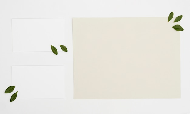 Płaska Laya Minimalistyczna Karta Makiety Darmowe Zdjęcia