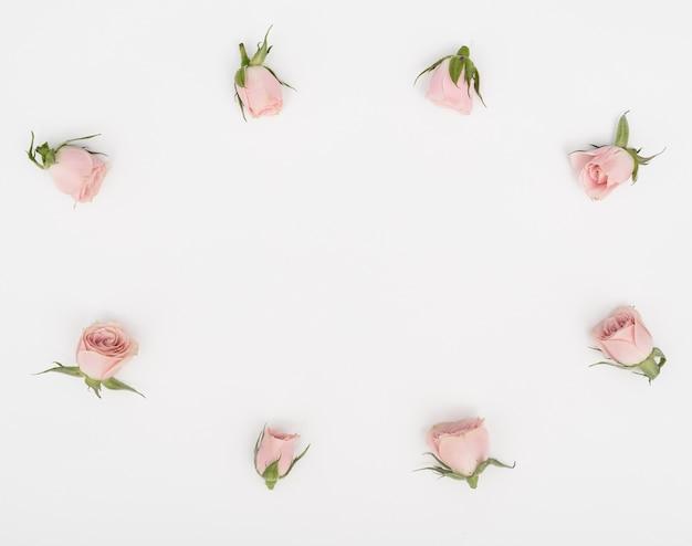 Płaskie świeckich Rama Pąki Róży I Kopia Tło Darmowe Zdjęcia
