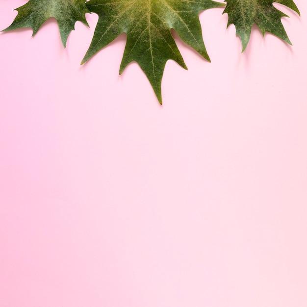 Płaskie Ukształtowanie Koncepcji Pięknej Przyrody Darmowe Zdjęcia