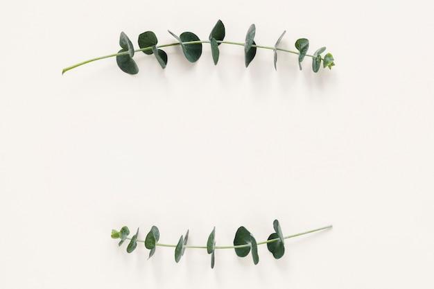 Płaskie ukształtowanie liści z copyspace Darmowe Zdjęcia