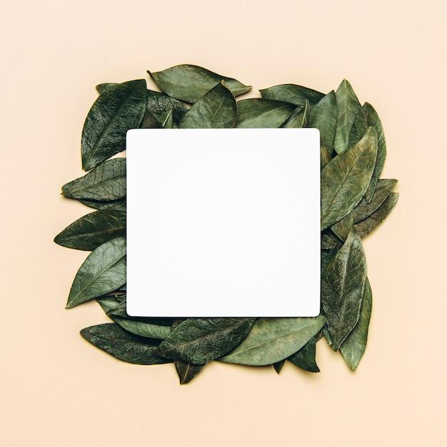 Płasko Ułożony Biały Blank Z Zielonymi Naturalnymi Liśćmi. Premium Zdjęcia