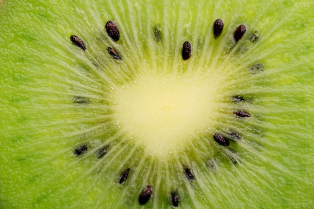 Plasterek Kiwi Z Bliska Darmowe Zdjęcia