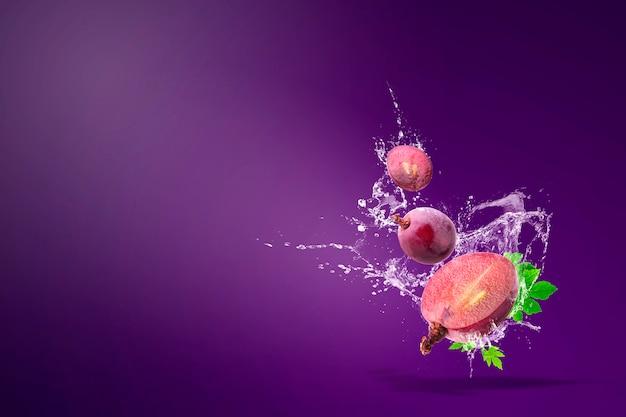 Plusk Wody Na świeże Czerwone Winogrona Na Fioletowo Premium Zdjęcia