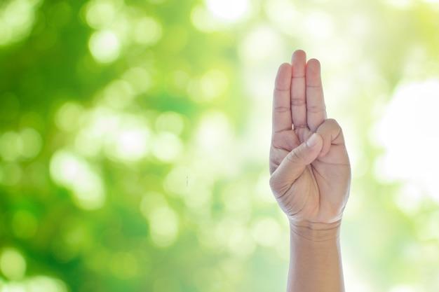 Podnoszenie rąk na zielony naturalny bokeh rozmyte abstrakcyjne tło Premium Zdjęcia