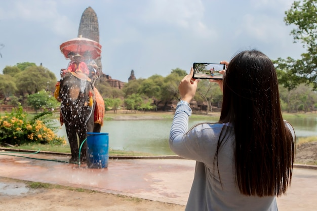 Podróże kobiety biorą zdjęcie słonia w świątyni ayutthaya Premium Zdjęcia