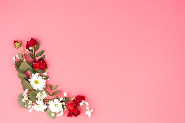 Podwyższony widok kwiaty i liść dekorujący na brzoskwini tle Darmowe Zdjęcia
