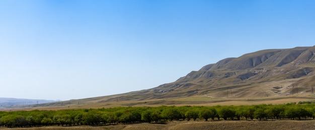 Pogórze Krajobraz Z Rzeką I Drzewami Premium Zdjęcia