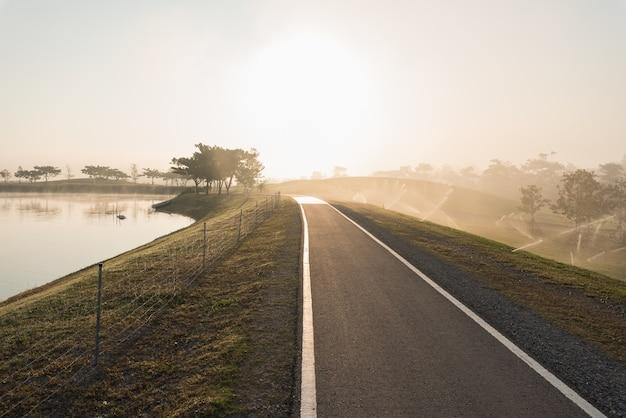 Pojedynczy Drzewo Przy Mgłową Drogą W Ranku Premium Zdjęcia