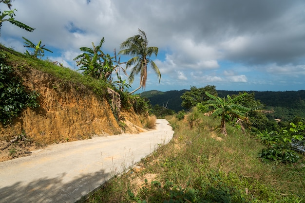 Polna Droga Wśród Dżungli I Gór Premium Zdjęcia
