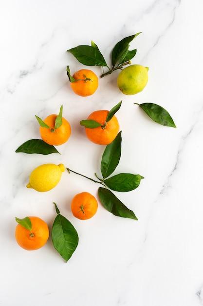 Pomarańcze, mandarynki i cytryny Premium Zdjęcia
