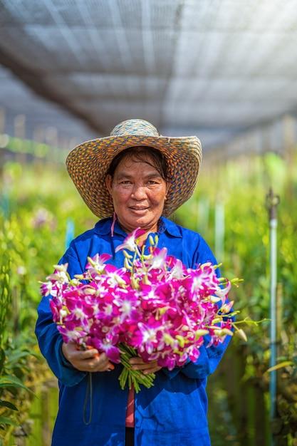 Portret Azjatykcia Ogrodniczka Storczykowy Ogrodnictwa Gospodarstwo Rolne Purpurowe Orchidee Kwitną W Ogrodowym Gospodarstwie Rolnym, Szczęście Pracownika Mienia Plik Okwitnięcie, Purpurowe Orchidee W Uprawiać Ziemię Bangkok, Thailand. Premium Zdjęcia