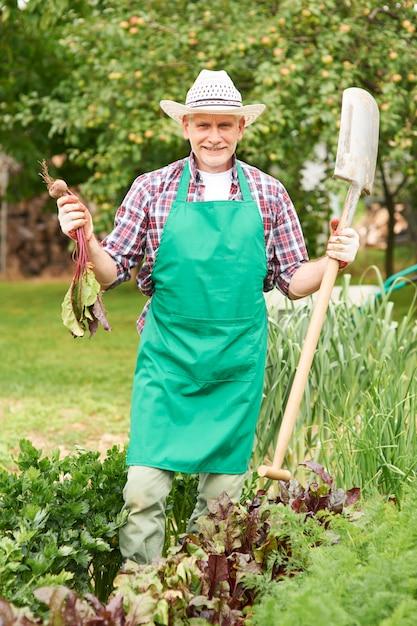 Portret Dumnego Rolnika Z Dojrzałych Buraków Darmowe Zdjęcia