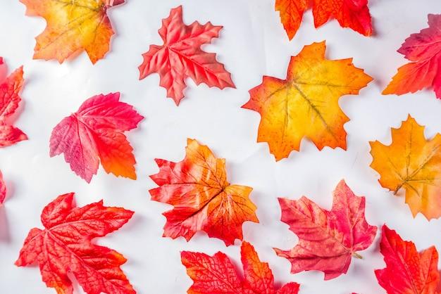 Prosty wzór jesiennych liści Premium Zdjęcia