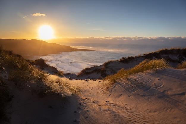Przepiękna Sceneria Piaszczystego Brzegu Z Widokiem Na Morze Darmowe Zdjęcia