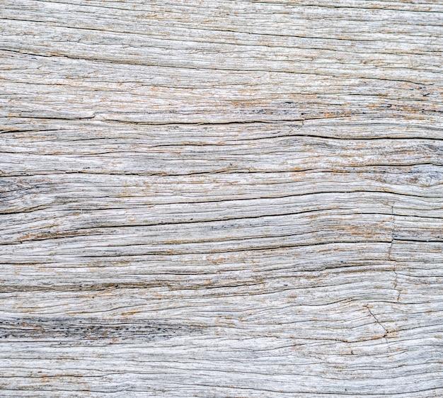 Przeznaczone Do Walki Radioelektronicznej Martwe Pnia Drewna Naturalne Tekstury Powierzchni Darmowe Zdjęcia