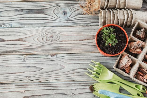Przygotowanie Wiosny Do Przesadzania Roślin. Garnek, łopata, Sukulenty Premium Zdjęcia
