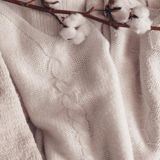 Przytulny Kwiat Bawełny. Bawełna Z Ciepłym Swetrem. Kompozycja Twórcza Martwa Natura. Modne Jesienne Tło Z Suszoną Bawełną. Premium Zdjęcia