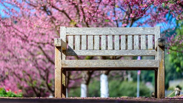 Puste Drewniane ławki Pod Drzewem Wiśni Premium Zdjęcia